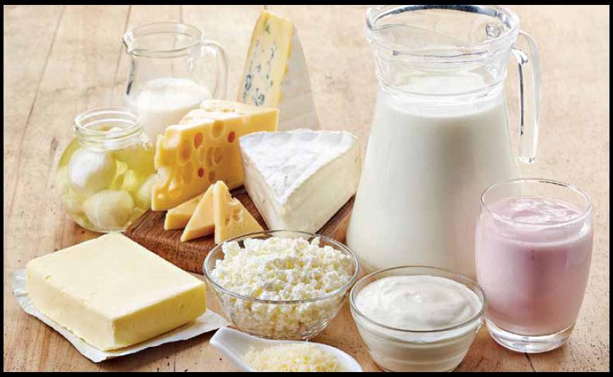 Back To Basics – Dairy