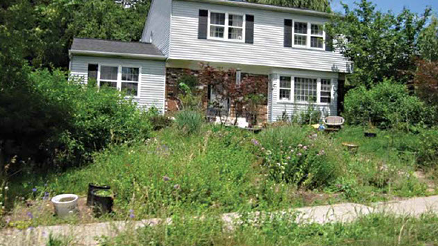 """""""My Neighbor's Yard Is Overgrown/Unkempt/Has Junk Piled Up. What Can I Do?"""""""