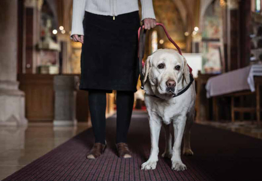 Taking Your Service Dog To Church